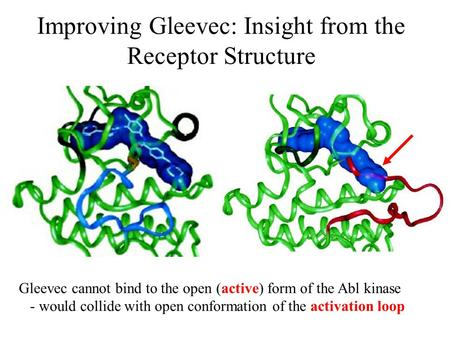 Improving Gleevec: Insight from the Receptor Structure Gleevec cannot bind to the open (active) form of the Abl kinase - would collide with open conformation.