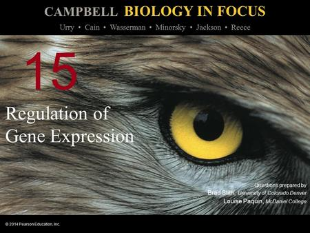 CAMPBELL BIOLOGY IN FOCUS © 2014 Pearson Education, Inc. Urry Cain Wasserman Minorsky Jackson Reece 15 Regulation of Gene Expression Questions prepared.