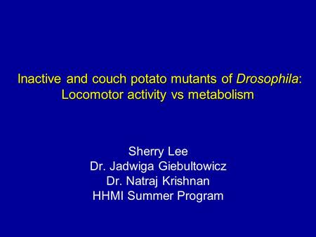Inactive and couch potato mutants of Drosophila: Locomotor activity vs metabolism Inactive and couch potato mutants of Drosophila: Locomotor activity vs.