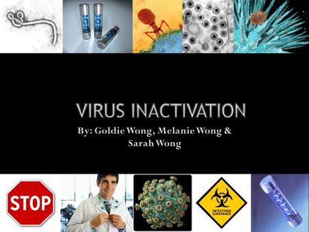Viruses can be lipid-coated or non- enveloped. Virus inactivation works by one of the following two mechanisms:  By attacking the viral envelope or capsid.