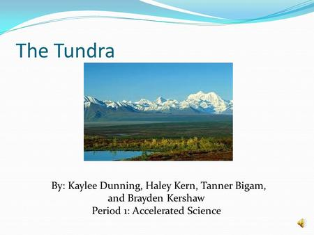 The Tundra By: Kaylee Dunning, Haley Kern, Tanner Bigam, and Brayden Kershaw Period 1: Accelerated Science.