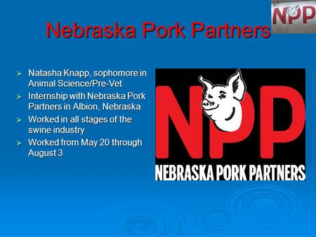 Nebraska Pork Partners  Natasha Knapp, sophomore in Animal Science/Pre-Vet  Internship with Nebraska Pork Partners in Albion, Nebraska  Worked in all.