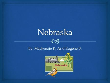 By: Mackenzie K. And Eugene B. Nickname and Region Nebraska has a very funny nickname. Its nickname is the Beef State. The region is the Midwest.