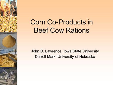 Corn Co-Products in Beef Cow Rations John D. Lawrence, Iowa State University Darrell Mark, University of Nebraska.
