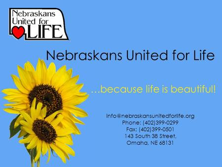 .…because life is beautiful! Phone: (402)399-0299 Fax: (402)399-0501 143 South 38 Street, Omaha, NE 68131 Nebraskans United.