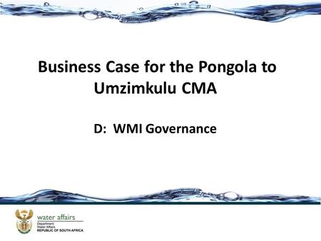 Business Case for the Pongola to Umzimkulu CMA D: WMI Governance.