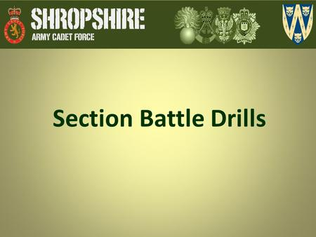 Section Battle Drills.