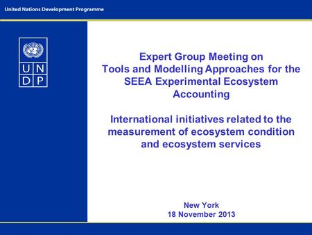 Expert Group Meeting on Tools and Modelling Approaches for the SEEA Experimental Ecosystem Accounting International initiatives related to the measurement.