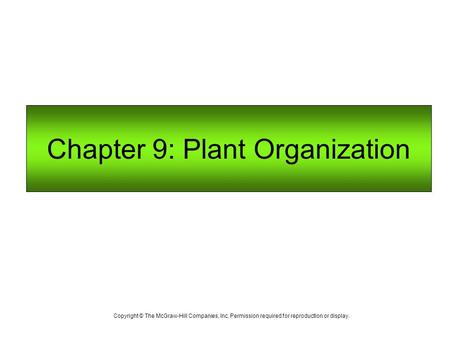 Chapter 9: Plant Organization Copyright © The McGraw-Hill Companies, Inc. Permission required for reproduction or display.