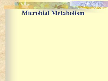 Microbial Metabolism.
