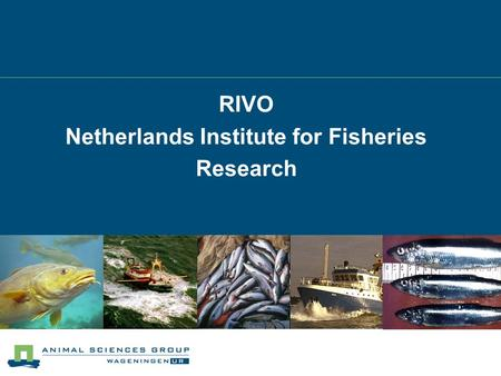 RIVO Netherlands Institute for Fisheries Research.