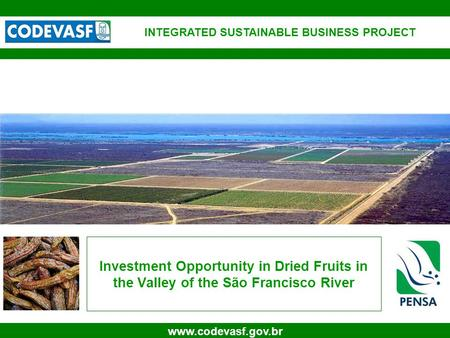 1 www.codevasf.gov.br Investment Opportunity in Dried Fruits in the Valley of the São Francisco River INTEGRATED SUSTAINABLE BUSINESS PROJECT.