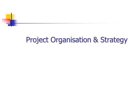 Project Organisation & Strategy. Key Elements Business Drivers Project Definition Risks.