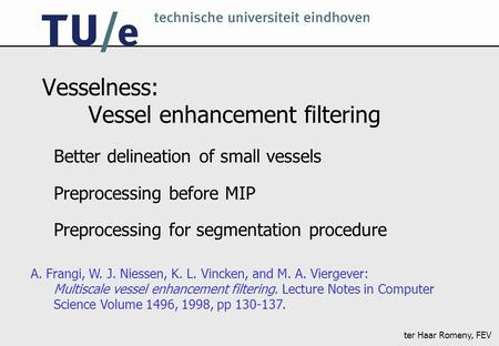Ter Haar Romeny, FEV Vesselness: Vessel enhancement filtering Better delineation of small vessels Preprocessing before MIP Preprocessing for segmentation.