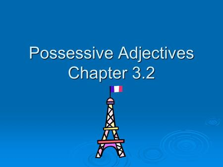 Possessive Adjectives Chapter 3.2