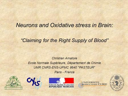 "Neurons and Oxidative stress in Brain: ""Claiming for the Right Supply of Blood"" Christian Amatore Ecole Normale Supérieure, Département de Chimie UMR CNRS-ENS-UPMC."