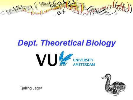 Tjalling Jager Dept. Theoretical Biology. Where we are.