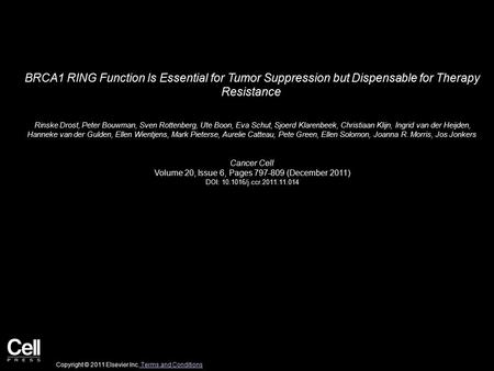 BRCA1 RING Function Is Essential for Tumor Suppression but Dispensable for Therapy Resistance Rinske Drost, Peter Bouwman, Sven Rottenberg, Ute Boon, Eva.