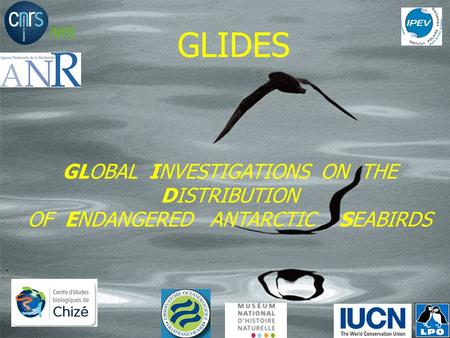 GLIDES GLOBAL INVESTIGATIONS ON THE DISTRIBUTION OF ENDANGERED ANTARCTIC SEABIRDS.