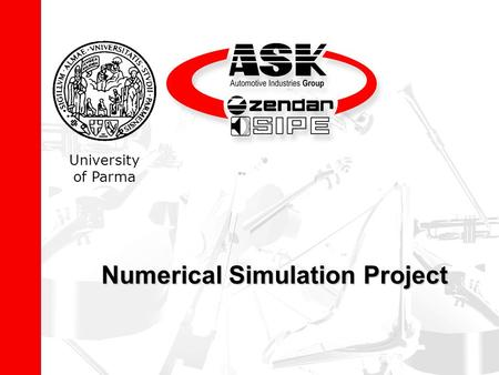 Numerical Simulation Project University of Parma.