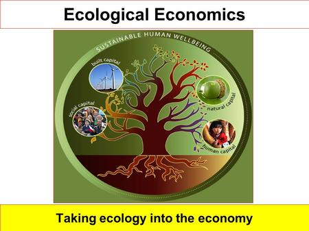 ecological economics The ecology of commerce: a declaration of sustainability by paul hawken  john b cobb, jr outlines a new, sustainable economics based upon community.