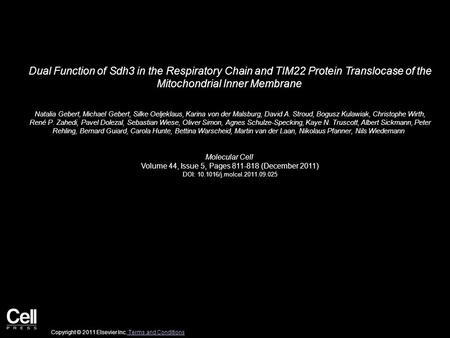 Dual Function of Sdh3 in the Respiratory Chain and TIM22 Protein Translocase of the Mitochondrial Inner Membrane Natalia Gebert, Michael Gebert, Silke.
