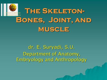 The Skeleton-Bones, Joint, and muscle