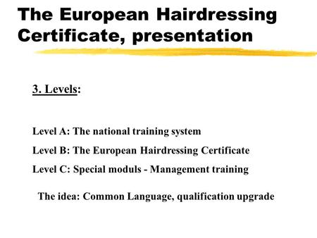 The European Hairdressing Certificate, presentation 3. Levels: Level A: The national training system Level B: The European Hairdressing Certificate Level.