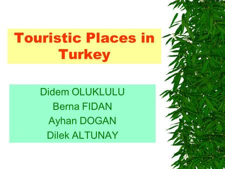 Touristic Places in Turkey Didem OLUKLULU Berna FIDAN Ayhan DOGAN Dilek ALTUNAY.