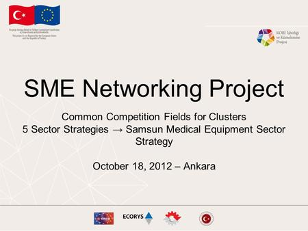 SME Networking Project Common Competition Fields for Clusters 5 Sector Strategies → Samsun Medical Equipment Sector Strategy October 18, 2012 – Ankara.
