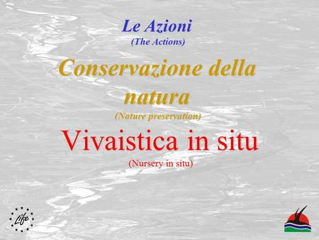 Conservazione della natura (Nature preservation) Vivaistica in situ (Nursery in situ) Le Azioni (The Actions)
