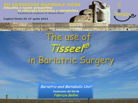 The use of Tisseel® in Bariatric Surgery SICOB Cagliari, 2013 The use of Tisseel ® in Bariatric Surgery Bariatric and Metabolic Unit Desenzano del Garda.
