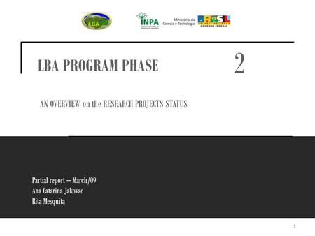 1 Partial report – March/09 Ana Catarina Jakovac Rita Mesquita LBA PROGRAM PHASE AN OVERVIEW on the RESEARCH PROJECTS STATUS 2.