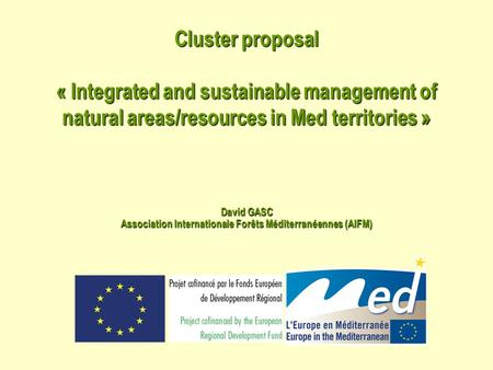 Cluster proposal « Integrated and sustainable management of natural areas/resources in Med territories » David GASC Association Internationale Forêts Méditerranéennes.