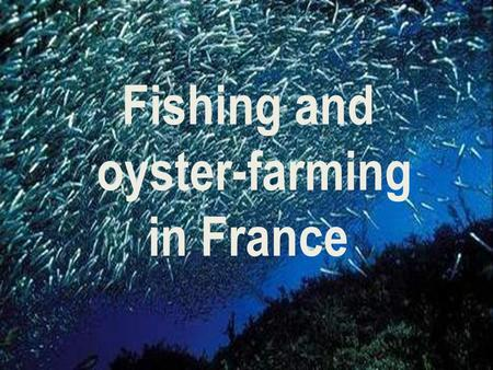 Fishing and oyster-farming in France. The France is the second world maritime domain after the United States. & On the ourth of the European Union with.