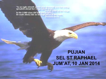 PUJIAN SEL ST RAPHAEL JUM'AT, 10 JAN 2014.