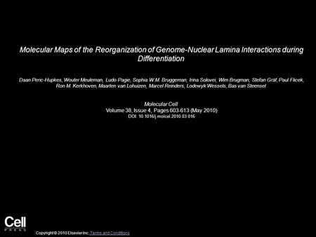 Molecular Maps of the Reorganization of Genome-Nuclear Lamina Interactions during Differentiation Daan Peric-Hupkes, Wouter Meuleman, Ludo Pagie, Sophia.