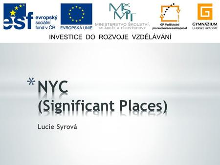Lucie Syrová. * Statue of Liberty * Times Square * Ground Zero * Wall Street, UN Headquarters * Empire State Building, Chrysler Building * Chinatown,
