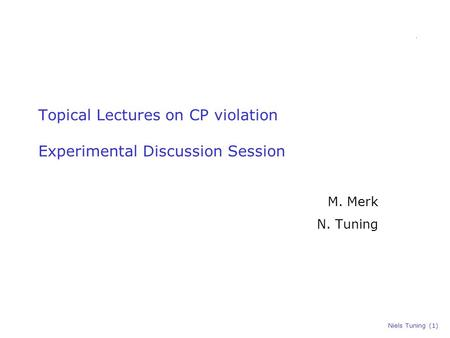 Niels Tuning (1) Topical Lectures on CP violation Experimental Discussion Session M. Merk N. Tuning.