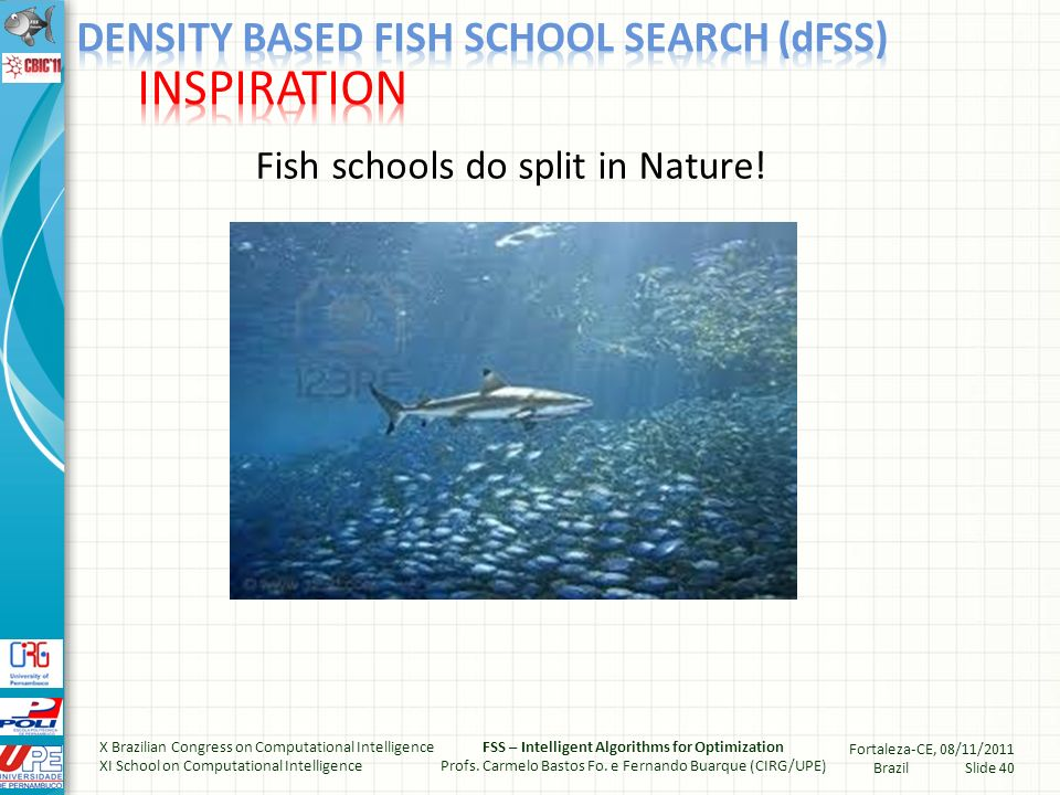 Large fish schools are good (for protection and for finding food) but are also bad (because of increased competition) The splitting of the school could be governed by the density of fish within a sub-regions of the school Densely populated regions would provide food to closer fish much more efficiently than to fish that are apart (a sort of collaborative behavior) X Brazilian Congress on Computational Intelligence XI School on Computational Intelligence FSS – Intelligent Algorithms for Optimization Profs.