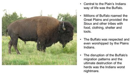 Central to the Plain's Indians way of life was the Buffalo. Millions of Buffalo roamed the Great Plains and provided the Sioux and other tribes with food,