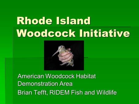 Rhode Island Woodcock Initiative American Woodcock Habitat Demonstration Area Brian Tefft, RIDEM Fish and Wildlife.