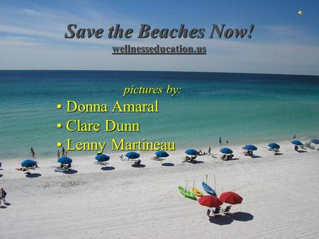 Save the Beaches Now! wellnesseducation.us pictures by: Donna Amaral Donna Amaral Clare Dunn Clare Dunn Lenny Martineau Lenny Martineau.