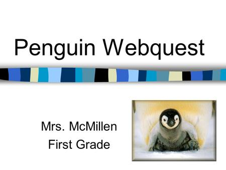 Penguin Webquest Mrs. McMillen First Grade. Sea World Web Cam Web Cam Make observations. What do you see?