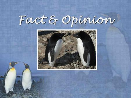 Fact & Opinion. A FACT is a statement that can be proven true. FACT: A penguin is a bird.