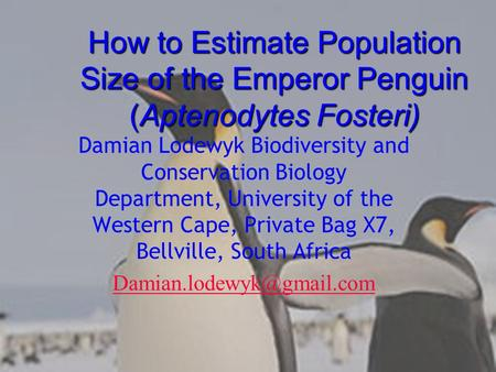 How to Estimate Population Size of the Emperor Penguin (Aptenodytes Fosteri) Damian Lodewyk Biodiversity and Conservation Biology Department, University.
