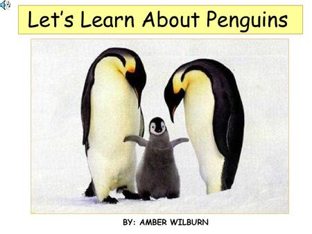 Let's Learn About Penguins BY: AMBER WILBURN. Penguins are Birds They cannot fly. TheyThey have black and white feathers. TheirTheir bodies are like torpedoes.