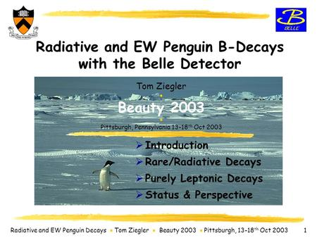Radiative and EW Penguin Decays  Tom Ziegler  Beauty 2003  Pittsburgh, 13-18 th Oct 2003 1 Radiative and EW Penguin B-Decays with the Belle Detector.