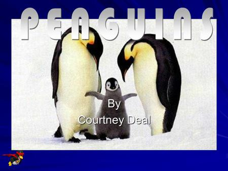 PENGUINS By Courtney Deal.
