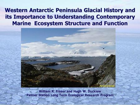 Western Antarctic Peninsula Glacial History and its Importance to Understanding Contemporary Marine Ecosystem Structure and Function William R. Fraser.